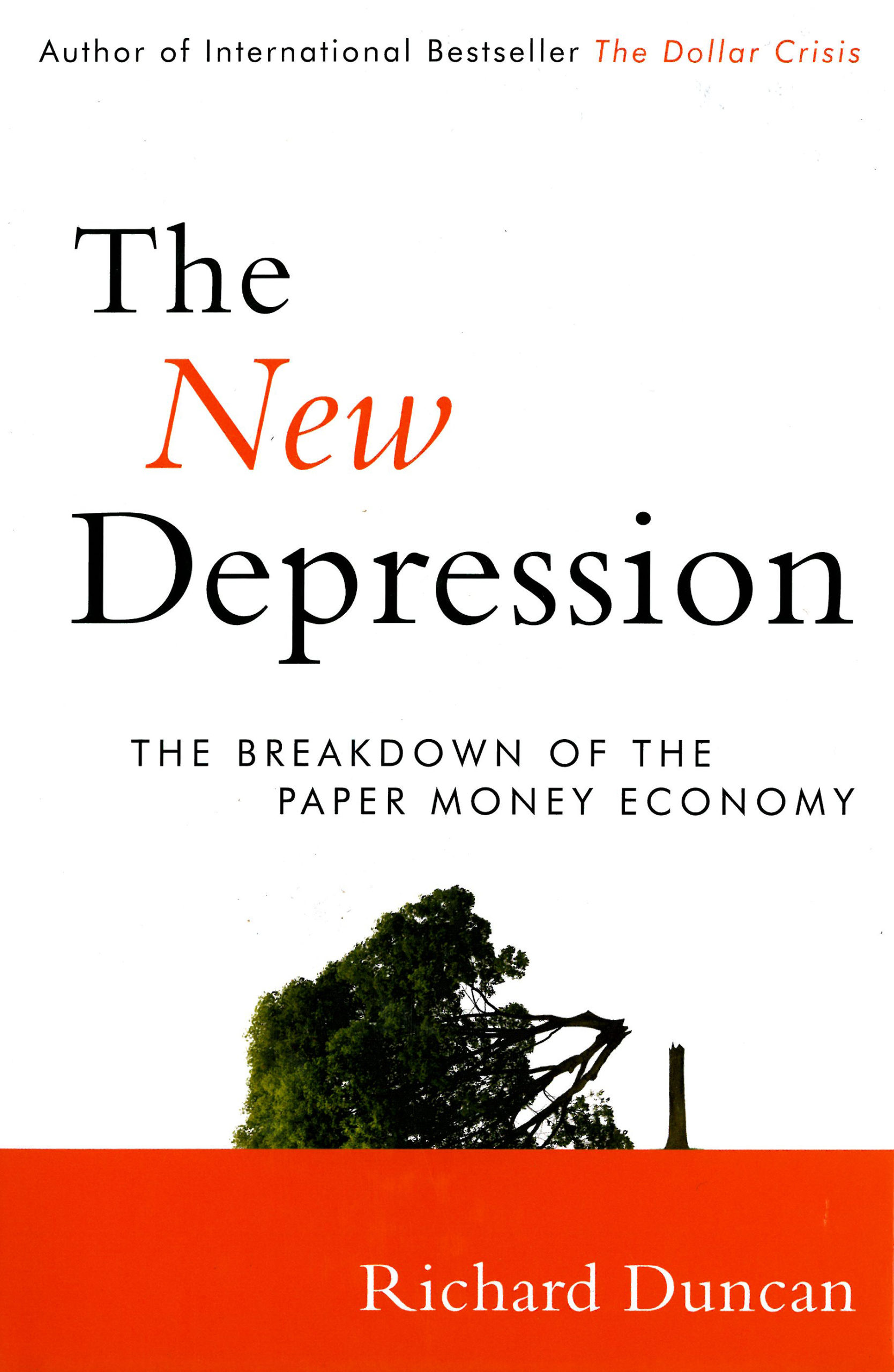 Richard Duncan: The New Depression. The Breakdown of the Paper Money Economy. John Wiley & Sons 2012, 179 s.