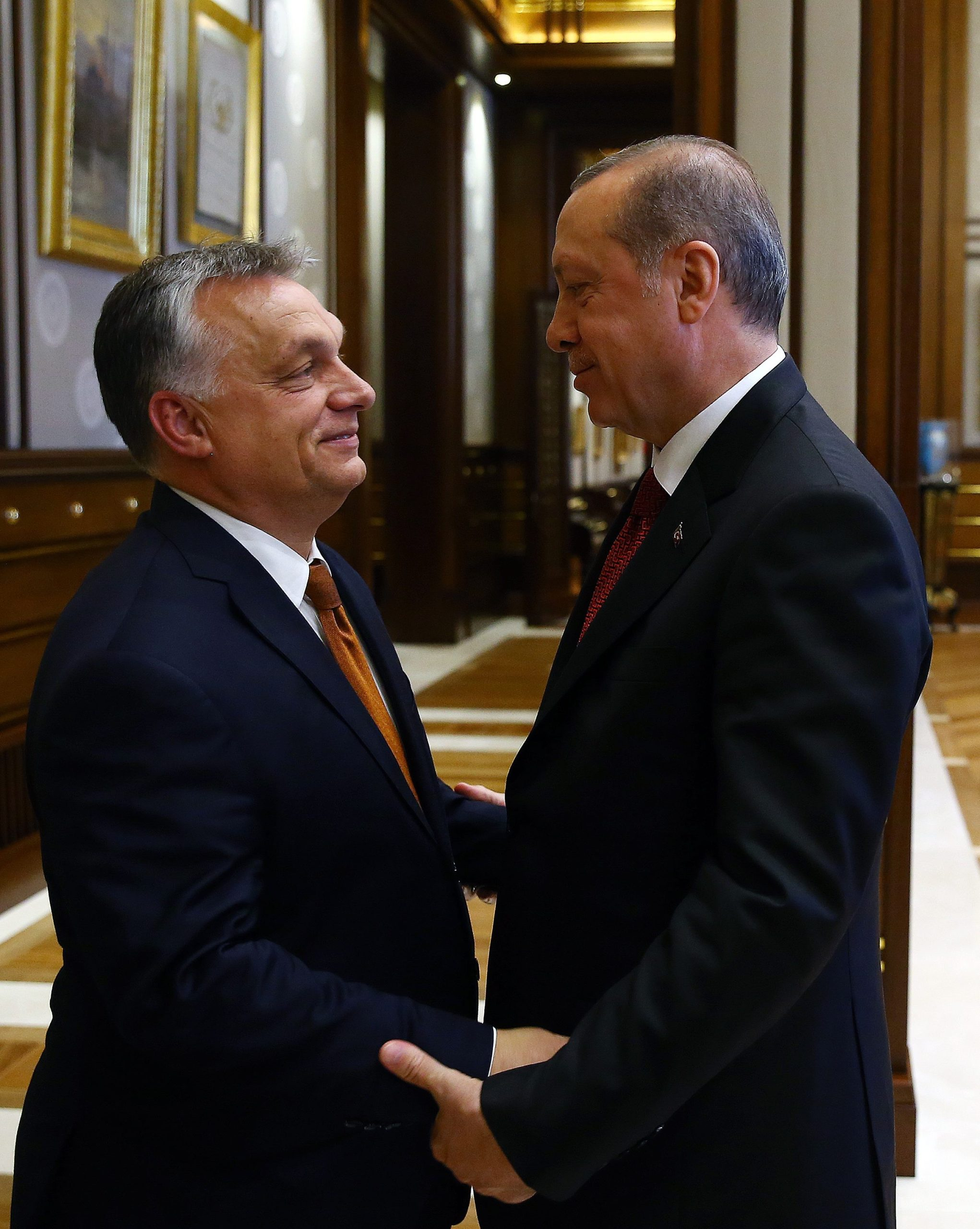 Unkarin pääministeri Viktor Orbán on tukenut Turkin presidenttiä Recep Tayyip Erdoğania jo pitkään. Orbán oli yksi harvoista EU-johtajista, joka osallistui Erdoğanin virkaanastujaisiin vuoden 2018 uudelleenvalinnan jälkeen. Myös Erdoğan on kiittänyt Orbánia tuestaan maailmannäyttämöllä. Kuva: Stella Pictures/All Over Press